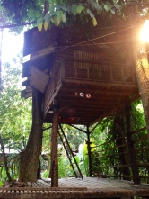 Girls only. Love this treehouse
