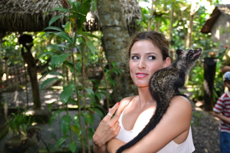Crystal and the Luwak